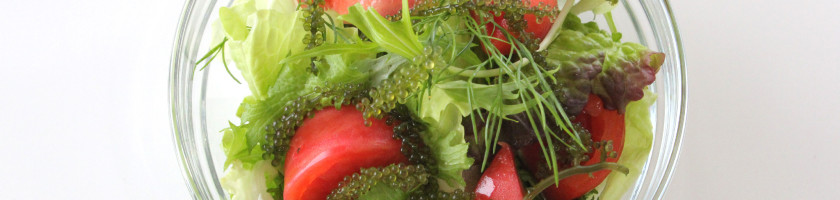 海ぶどうとフルーツトマト、フェンネルのサラダ